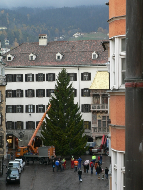 From my hotel room window I watched the Christmas tree going up